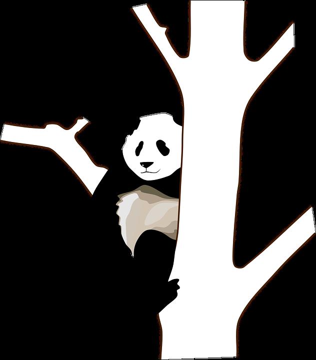 【アルゴリズム!?】パンダとペンギンの話
